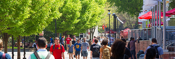 Internal Audits How We Help Image: Students walking down Liiacouras Walk
